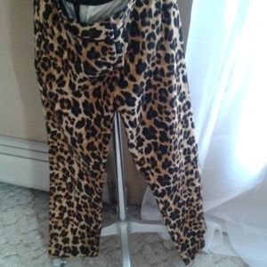 The Limited size 4 leopard print